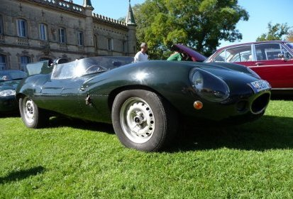 D type replica « short noze »